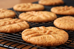 low fodmap wheat free gluten free peanut butter cookies