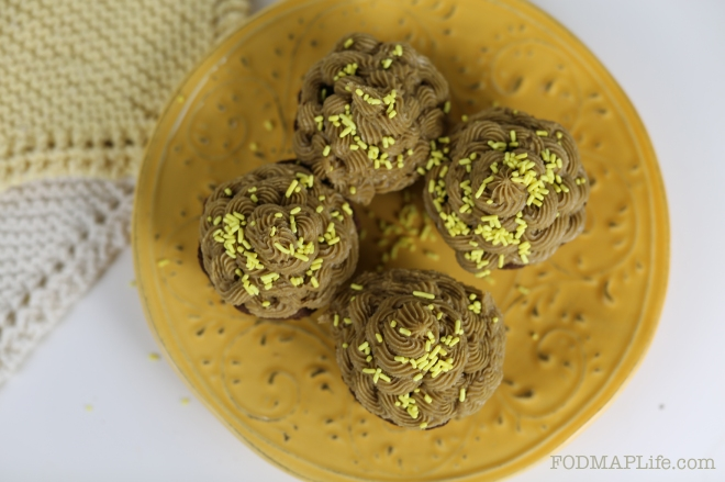 low fodmap chocolate teff cupcakes2